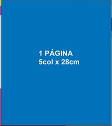 1 Página 5 col x 29 cm