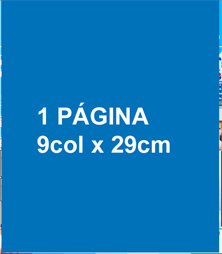 1 Página 9 col x 28 cm